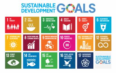 NCC tar globale mål inn i arbeidet med bærekraft